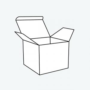 printed box mock-up