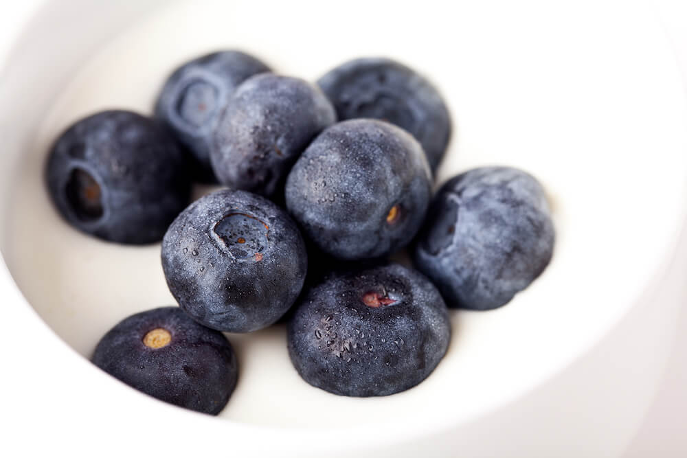 Fresh blueberries added to natural yoghurt, photograph taken by Kathryn Polley Photography